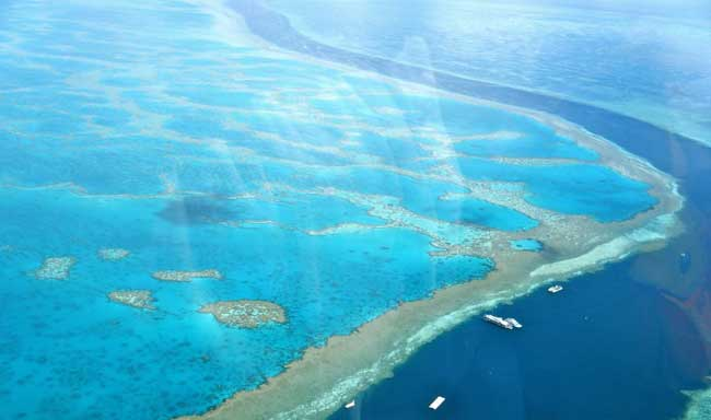 The Great Barrier Reef of Australia
